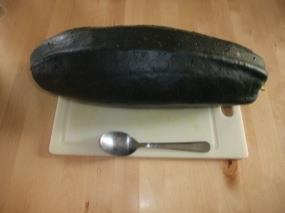 Photo de la courgette - spécimen de 40 cm et plus de 3 kg